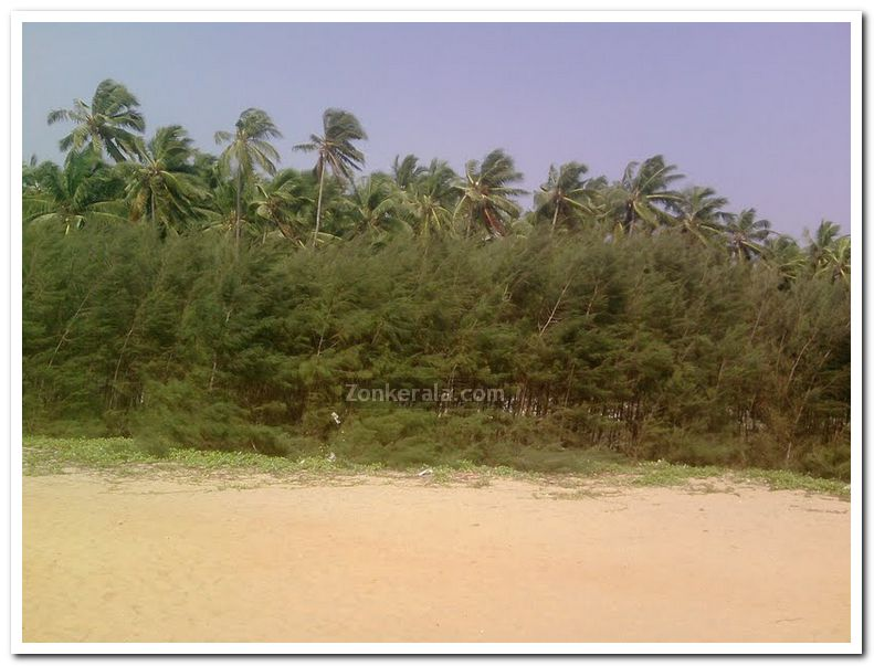 Varkala papanasam beach photo 3