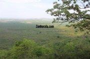 Wayanad wildlife sanctury photo 8 630