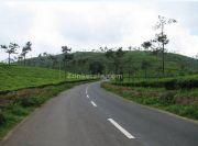 En route meppadi