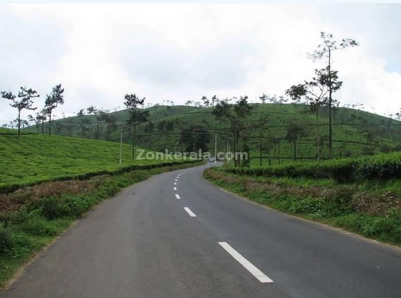 Kerala Photos : Kerala : Wayanad : En Route Meppadi