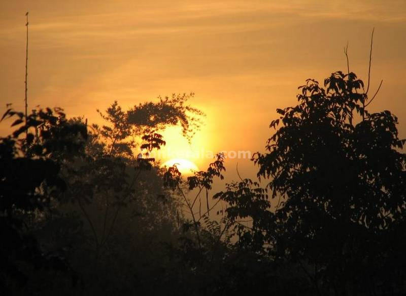 Sunrise at muthanga
