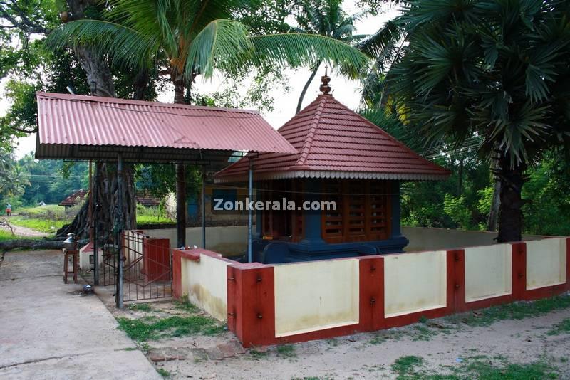 Kanyattukulangara temple ayaparampu photos 3