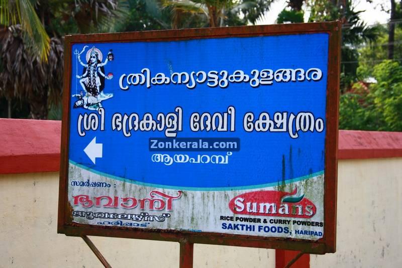 Kanyattukulangara temple ayaparampu photos 6