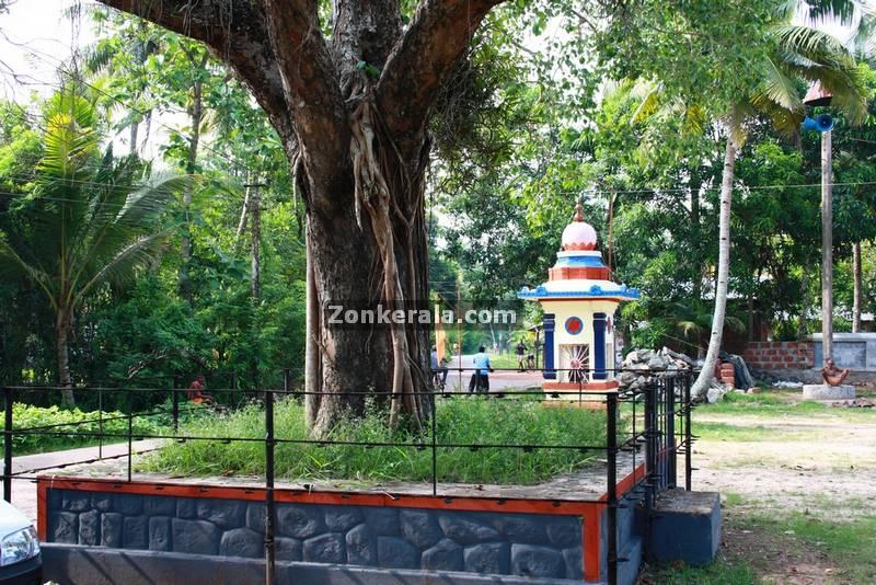 Thevarodathu mahavishnu temple haripad 3