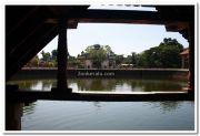 Ambalapuzha temple pond 3