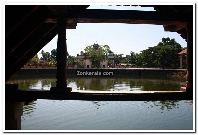 Ambalapuzha temple pond 3