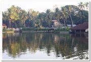 Haripad temple pond 4