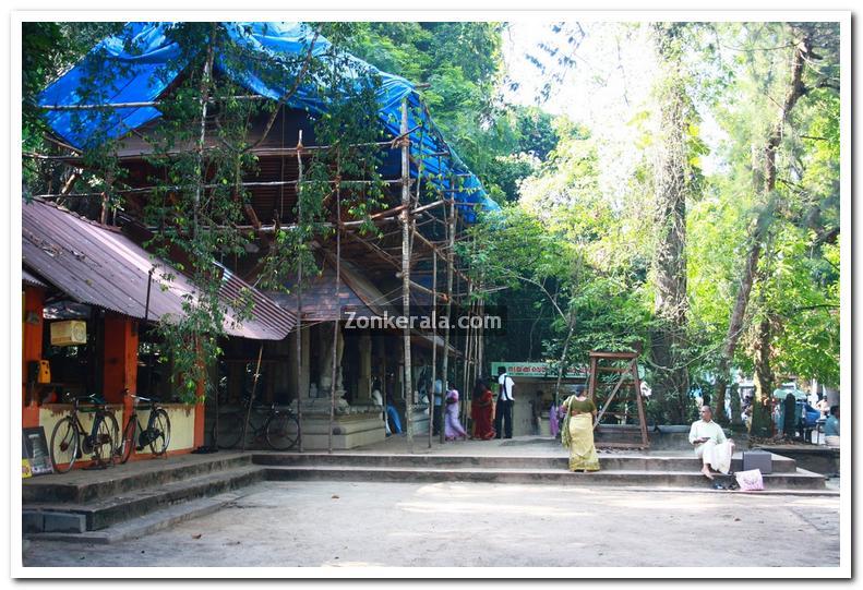 Mannarasala temple photos 1