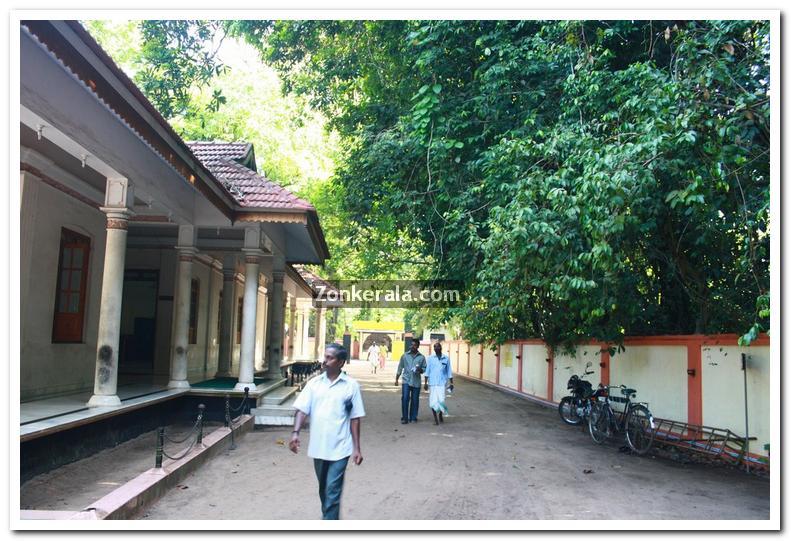 Mannarasala temple photos 2