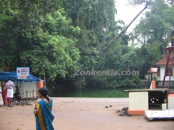 Mannarsala nagaraja temple 2