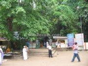 Mannarsala nagaraja temple entrance
