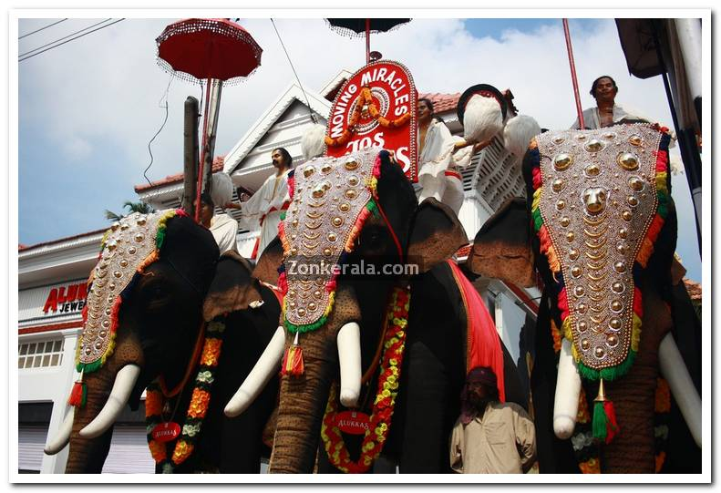 Artificial Elephants in front of Padmanabhaswamy Temple