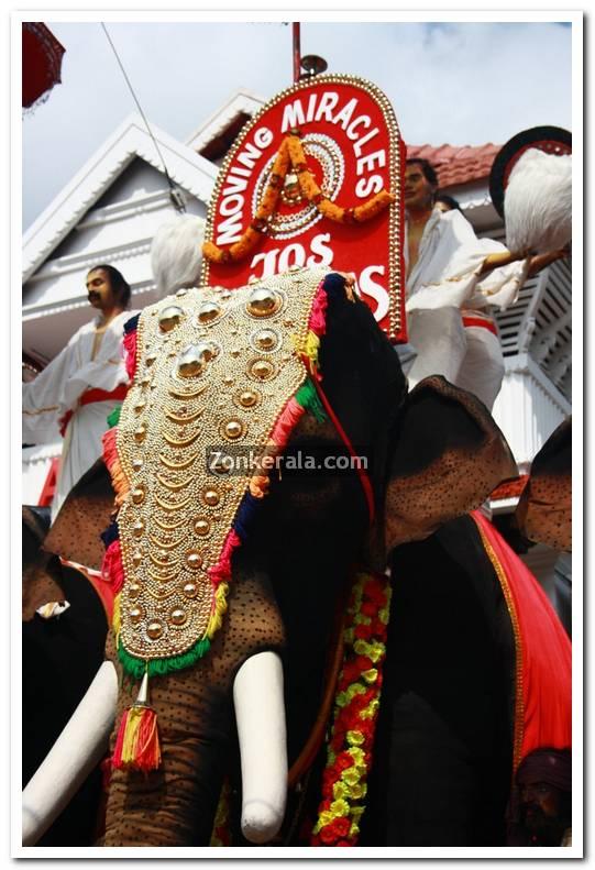 Alukkas jewellery artificial elephants 2