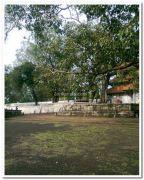 Thekkinkadu maithanam