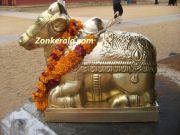 Rishabham in vaikom temple