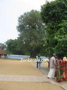 Vaikom temple aal thara
