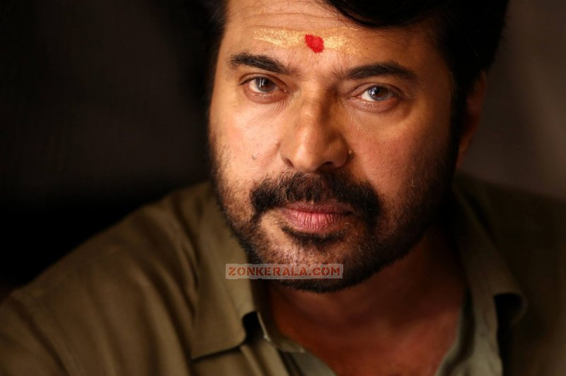 Actor Mammootty 7717