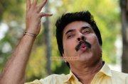 Malayalam Actor Mammootty 3812