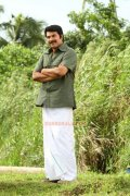 Mammootty New Pic 255