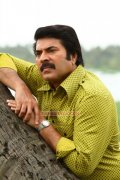Mammootty New Pic 876