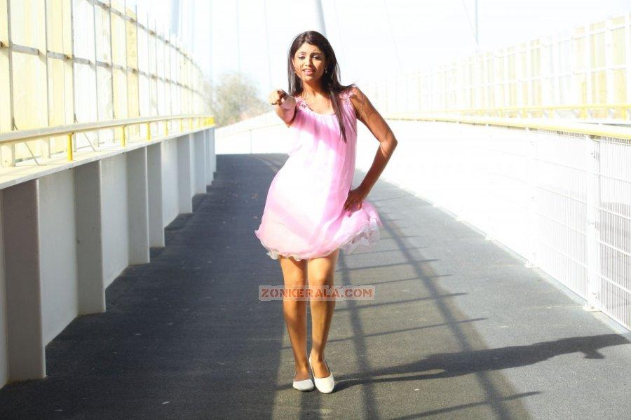 Aakansha Puri Photos 3130