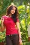 Aakansha Puri Stills 9778