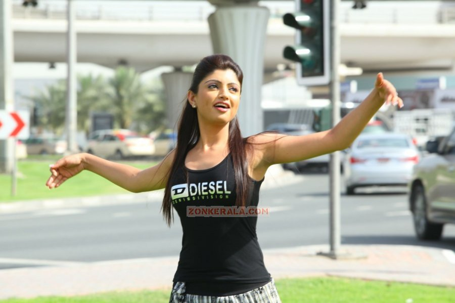 Malayalam Actress Aakansha Puri 2352