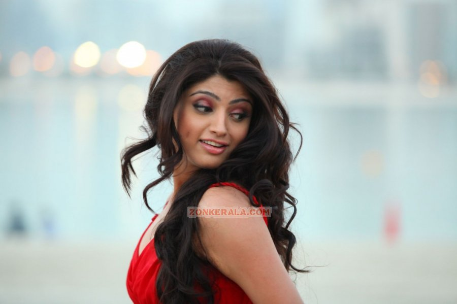 Malayalam Actress Aakansha Puri 2465