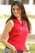 Aditi Rao Hydari Stills 7838