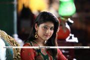 Akhila Sasidharan Photo 6