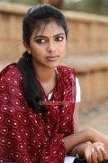 Actress Amala Paul 2334
