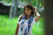 Actress Amala Paul 2904