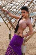 Actress Amala Paul 6439