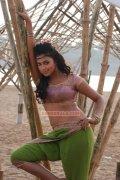 Actress Amala Paul Stills 6348