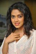 Actress Amala Paul Stills 780