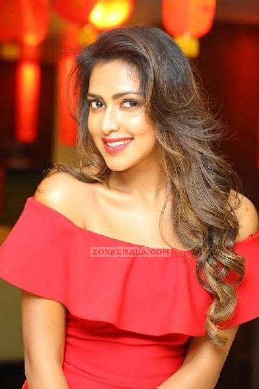 Album Malayalam Movie Actress Amala Paul 5746