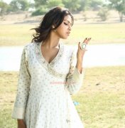 Amala Paul Photos 2265