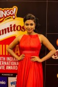 Amala Paul Stills 4170