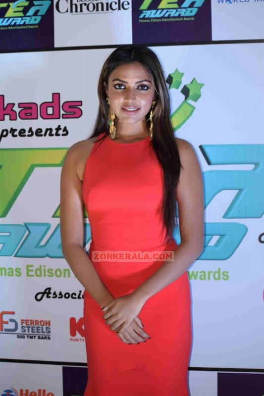 Latest Images Malayalam Movie Actress Amala Paul 4305