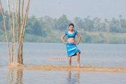Malayalam Actress Amala Paul 3342