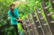 Malayalam Actress Amala Paul 5112