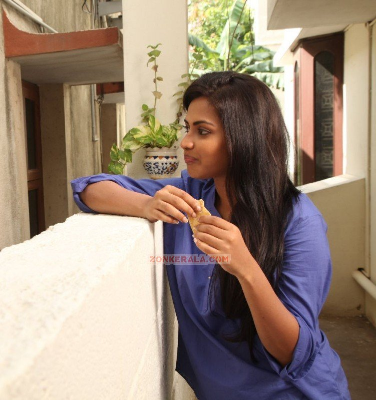 Malayalam Actress Amala Paul 5839