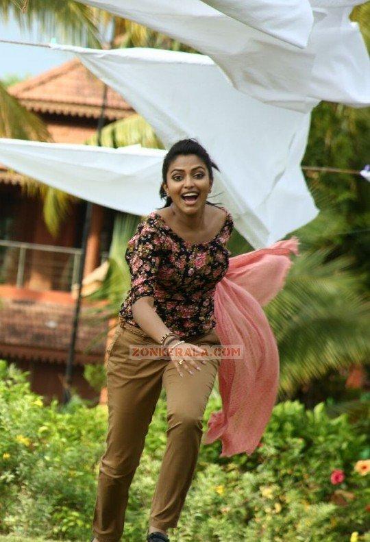 Malayalam Actress Amala Paul Photos 4778