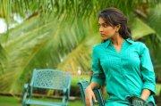 Malayalam Actress Amala Paul Photos 9939