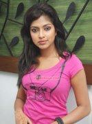 Malayalam Actress Amala Paul Stills 6365