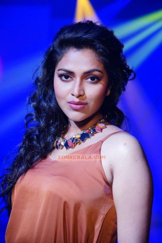 New Galleries Malayalam Movie Actress Amala Paul 7488