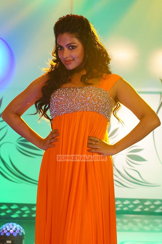 New Picture Amala Paul Movie Actress 6549