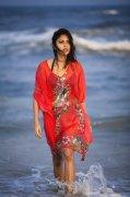 Picture Malayalam Movie Actress Amala Paul 3573