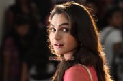 2014 Galleries Malayalam Movie Actress Andrea Jeremiah 2915