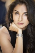 Andrea Jeremiah Cinema Actress New Album 6726